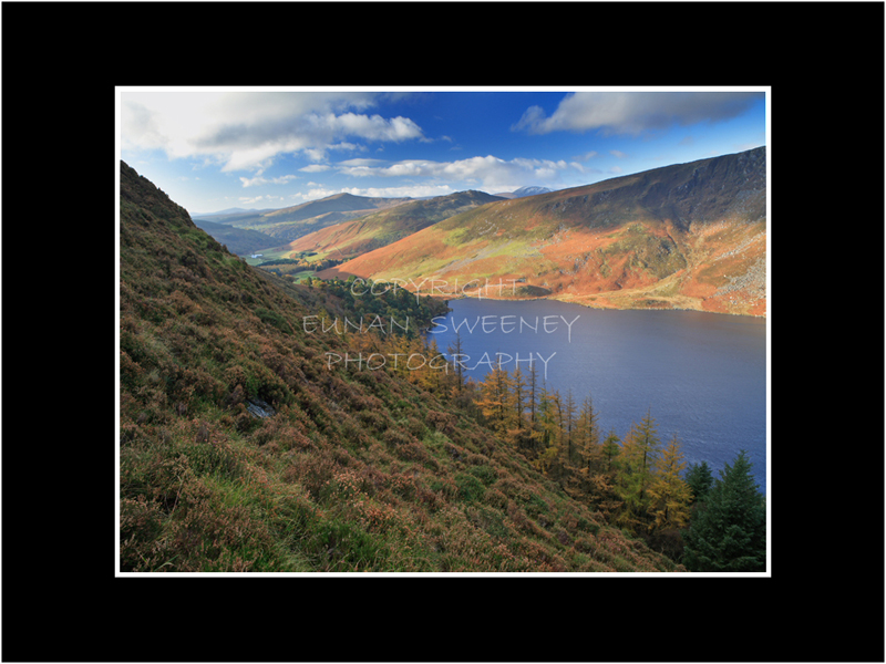 Morning Light . Lough Tay. Co. Wicklow